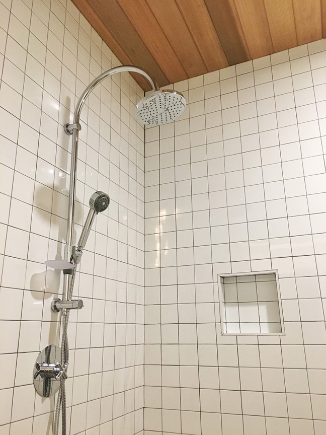 basement-shower